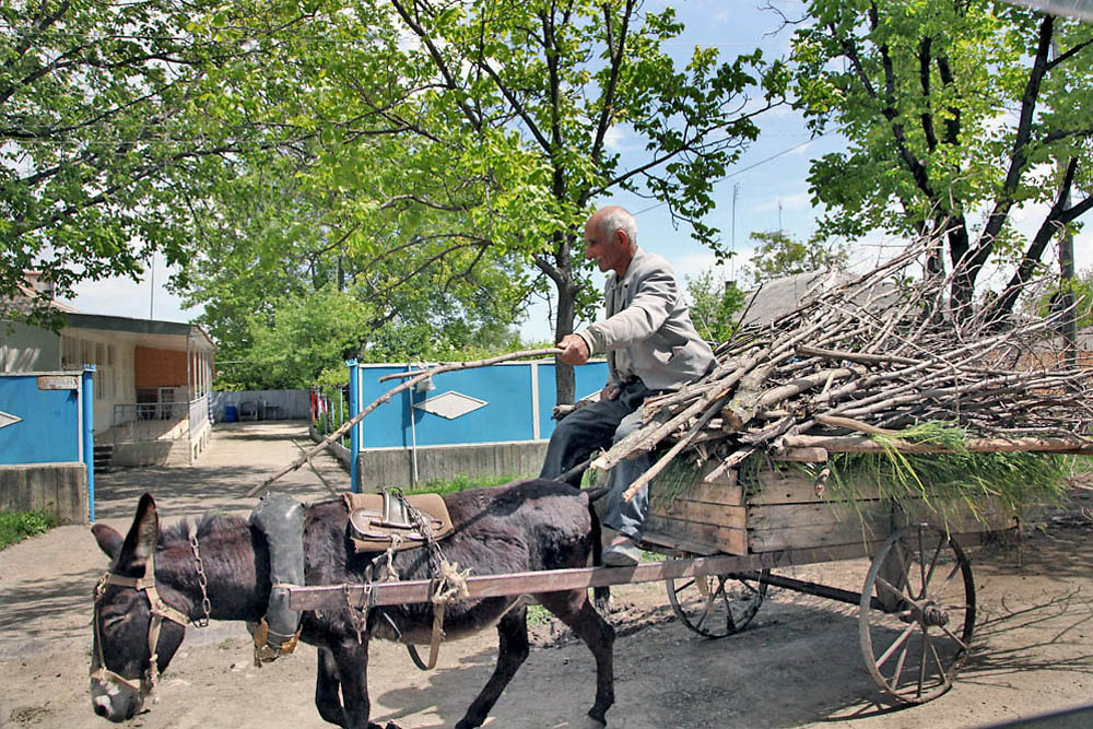 A local resident in Kvemo-Kartli delivers wood to his home.