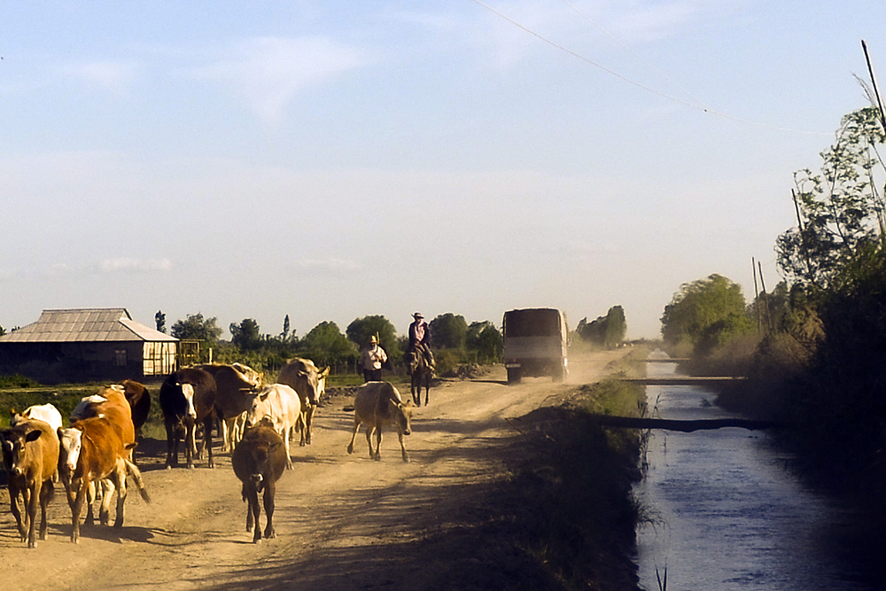 Sabirabad is a rural, conservative region with few jobs and where most people survive on subsistence farming.