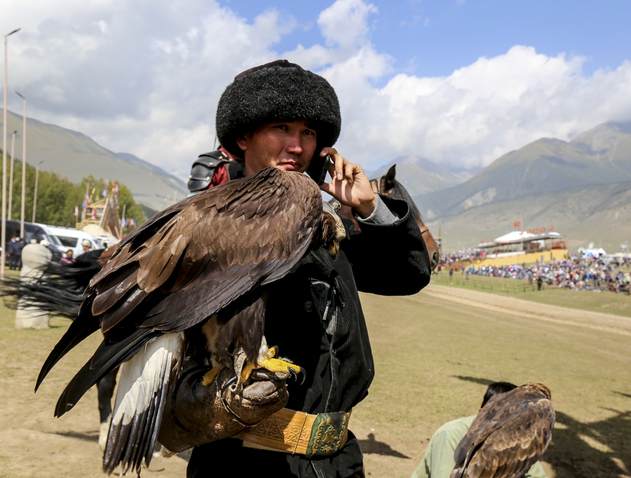 Falcon hunter