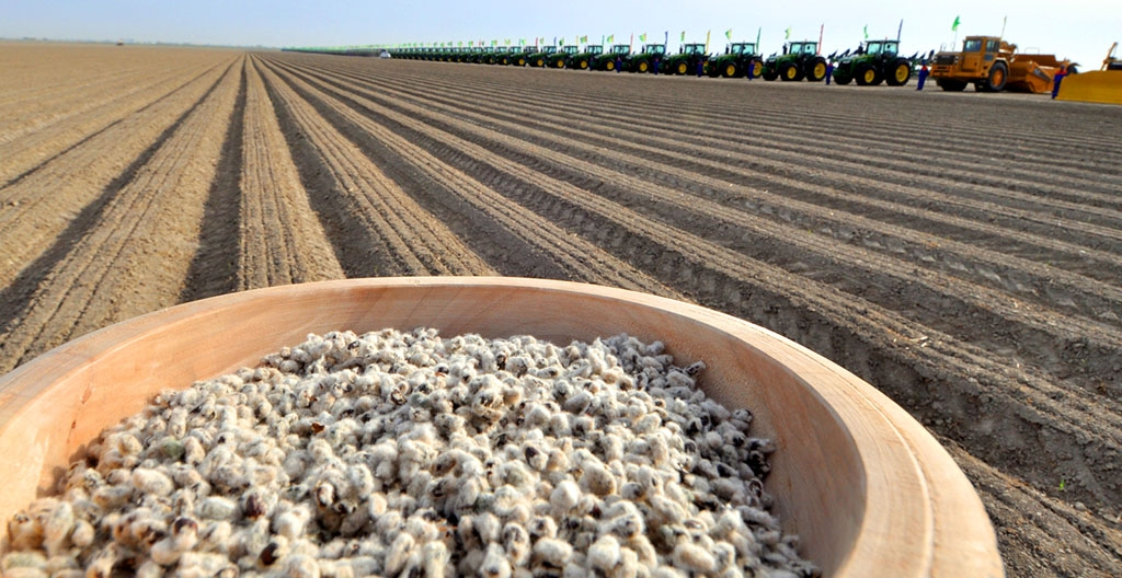 Farmers in Dashoguz Velayat begin cotton sowing. Anti-Slavery International has identified Turkmenistan as a perpetrator of forced labor in its cotton industry. (turkmenistan.gov.tm)