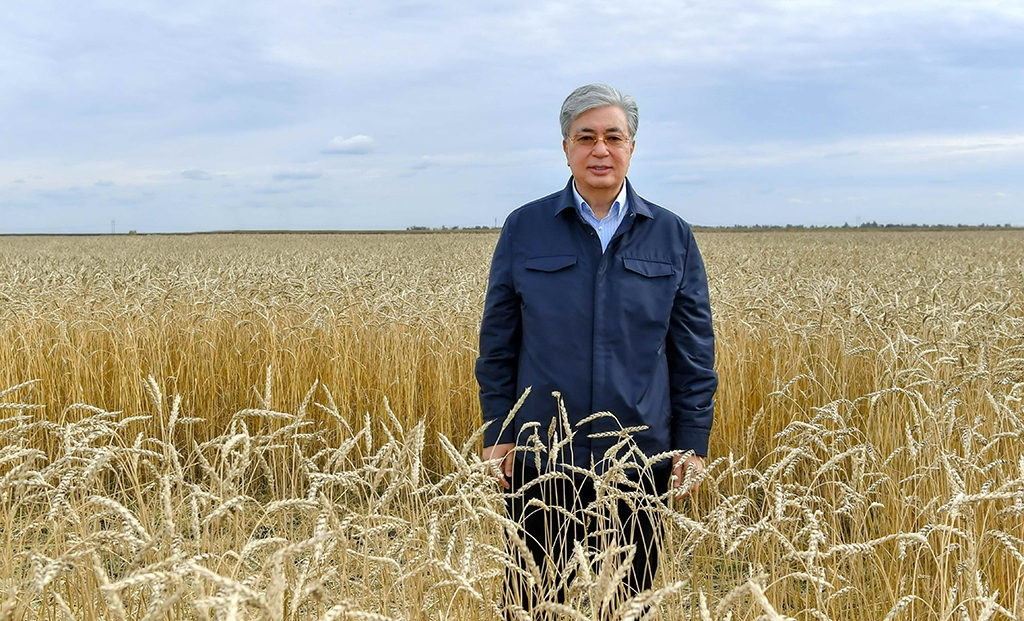 Out standing in his field: Is Tokayev's reshuffle about sorting the wheat from the chaff? (Photo: Presidential administration)