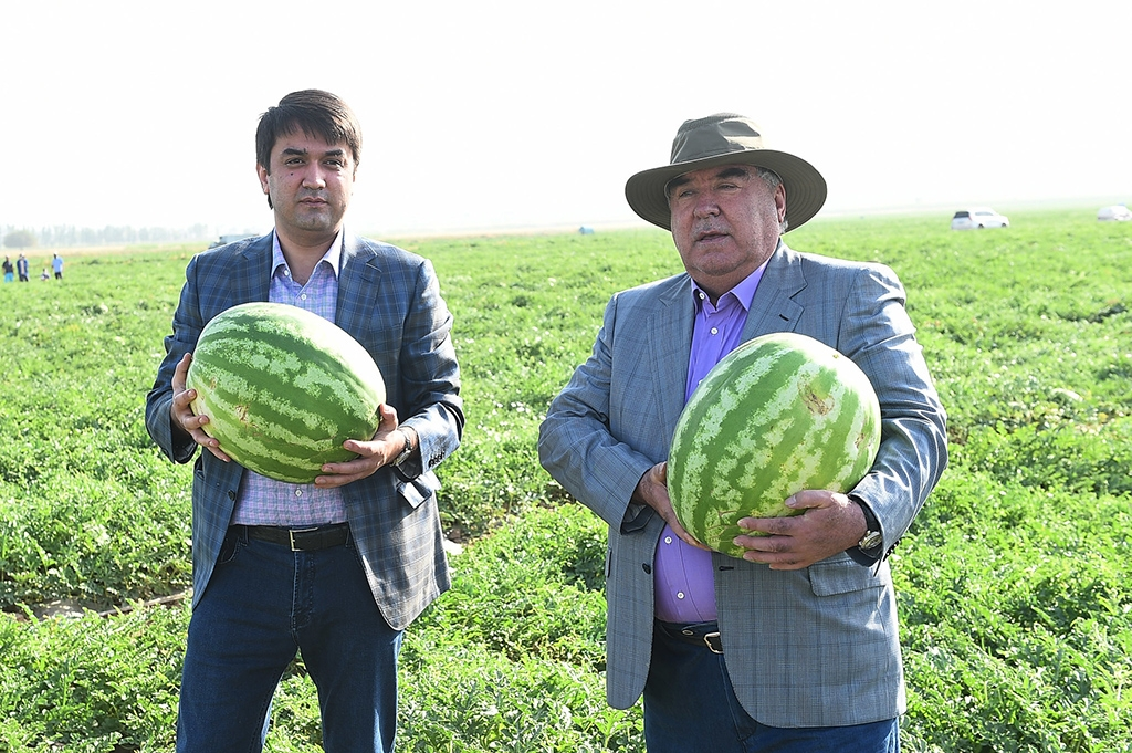 Pair of melons: Rustam Emomali, left, and President Emomali Rahmon. (Photo: Presidential administration)
