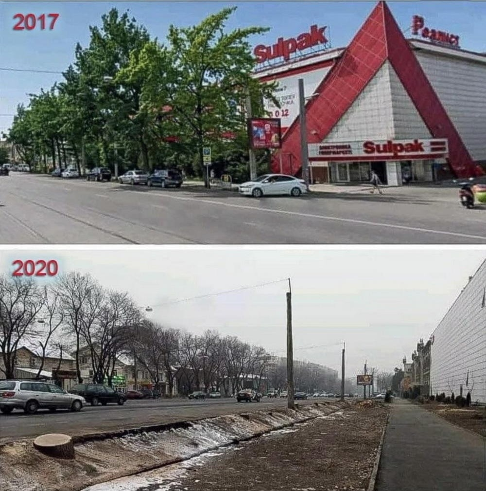 A widely circulated before-and-after image showing the results of the tree-felling outside the Sulpak store. (Photo: Facebook)