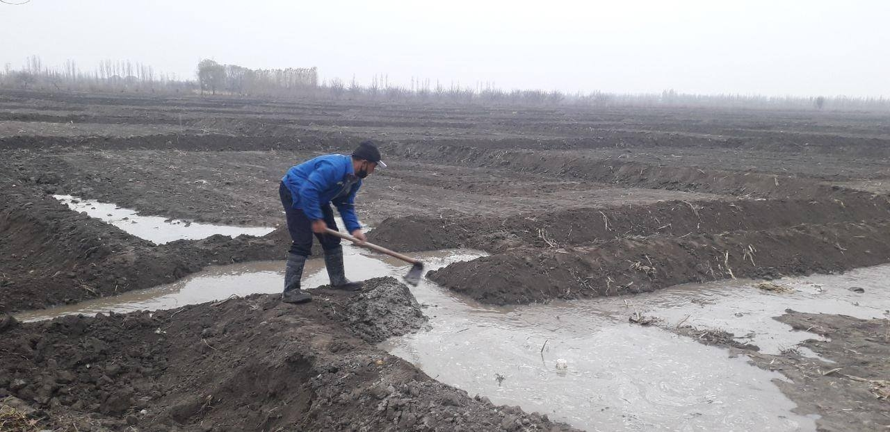 A rice farmer in the Ferghana (government handout)