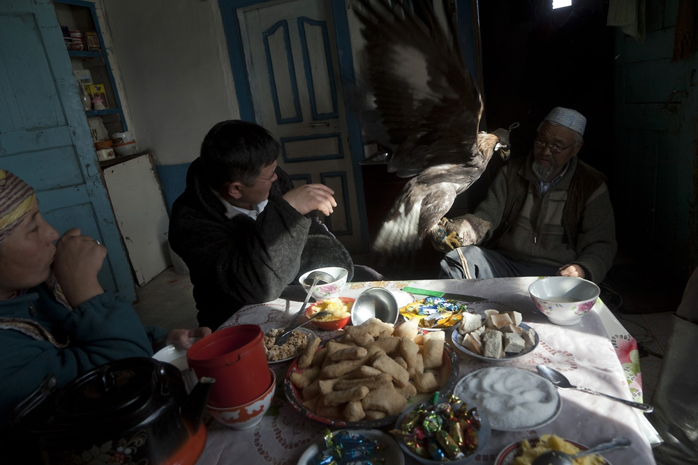 Shatirbai exercises a golden eagle for a hunt scheduled for the next day.