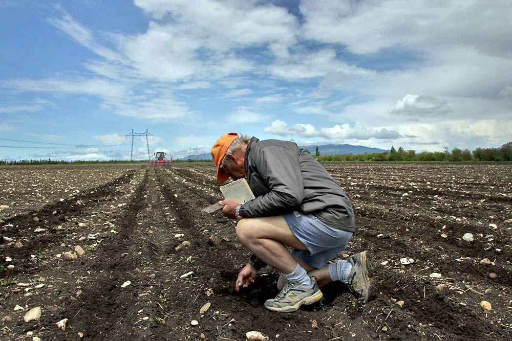 Piet Kemp oversees the planting of corn seeds.