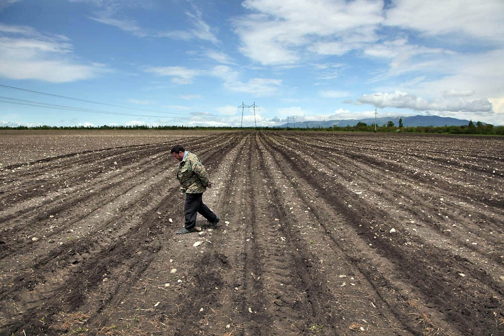 A local worker hired to work for Kemp walks on one of the fields used to grow corn.