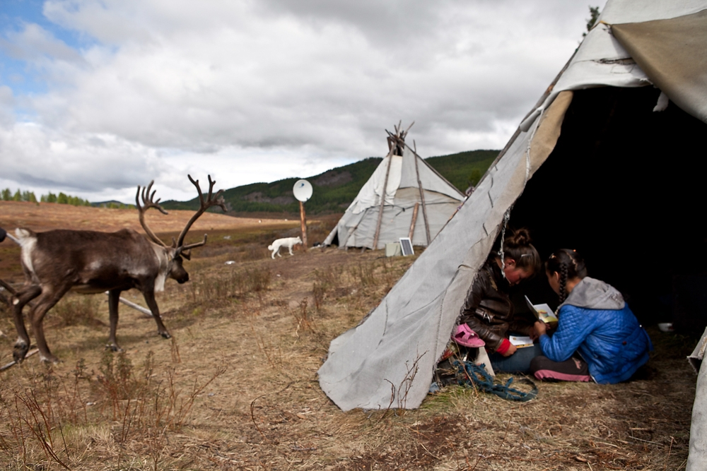 Left free to roam as it pleases, a reindeer walks past young girls reading books given to them as gifts.
