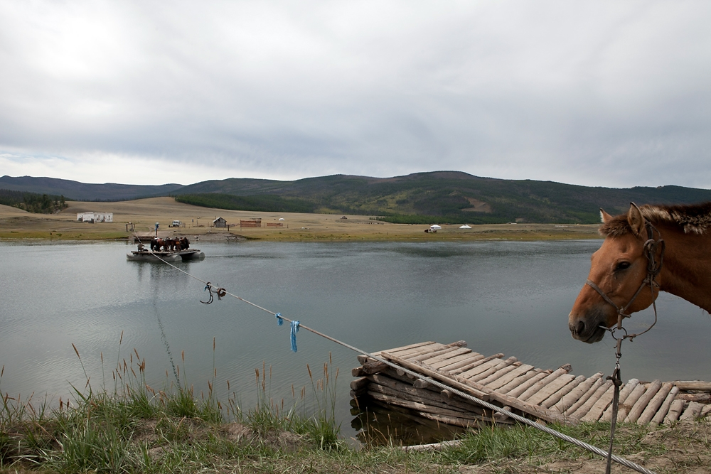 A horse waits its turn to be ferried across a river en route to the east Tsaatan camp.