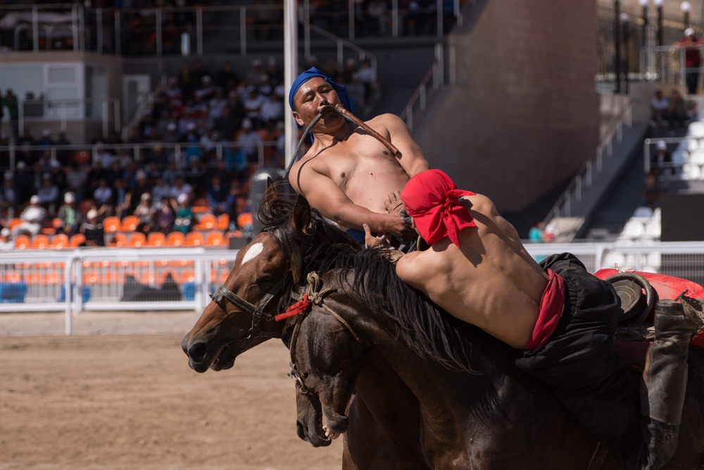 Two competitors in the final day of the Er enish competition, a traditional Kyrgyz form of wrestling on horseback.